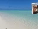 32 - Grüße von Heron Island!